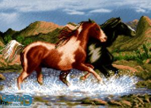 نخ و نقشه طرح اسب
