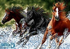 نخ و نقشه طرح اسب های وحشی