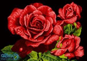 نخ و نقشه طرح شاخه های رز سرخ