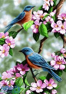 نخ و نقشه طرح آغاز بهار