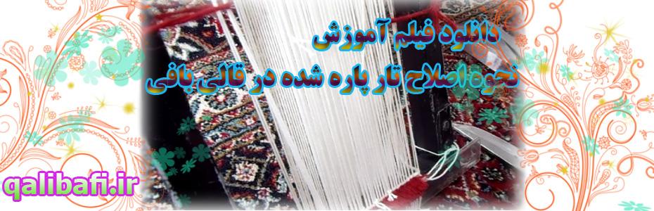 اصلاح تار پاره شده در قالی بافی